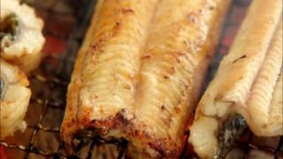 Let's Eat episode 7 eel grill 2